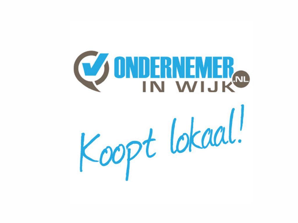 ondernemerinwijk.nl